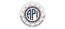 API Associazione Piccole e Medie Industrie